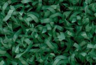 619-тъмно-зелен